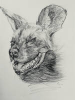 Happy Hyena by Pasmical