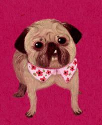 Commission: Yurii the pug