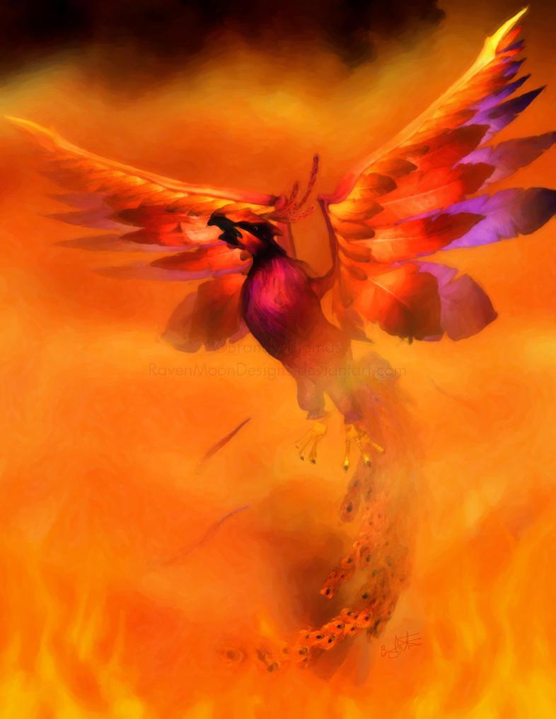 The Phoenix by RavenMoonDesigns