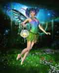 Faerie Glimmers in the Night