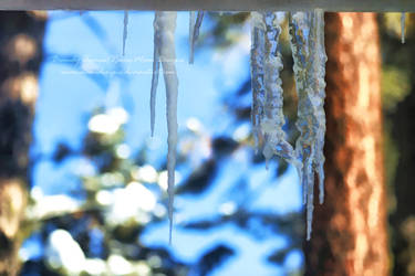 Icicles On A Sunny Day