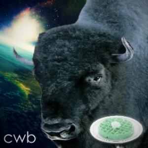 CosmicWaffleBison's Profile Picture