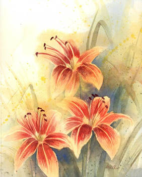 Impression of Day Lilies