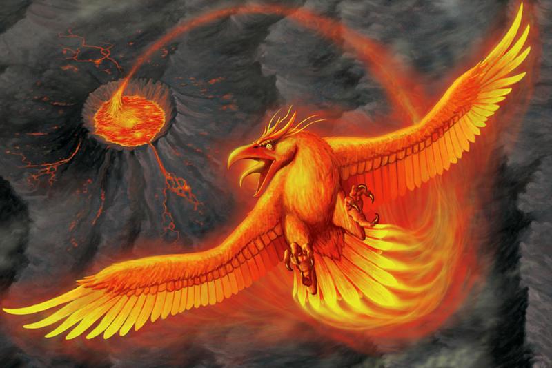 Phoenix by quellion