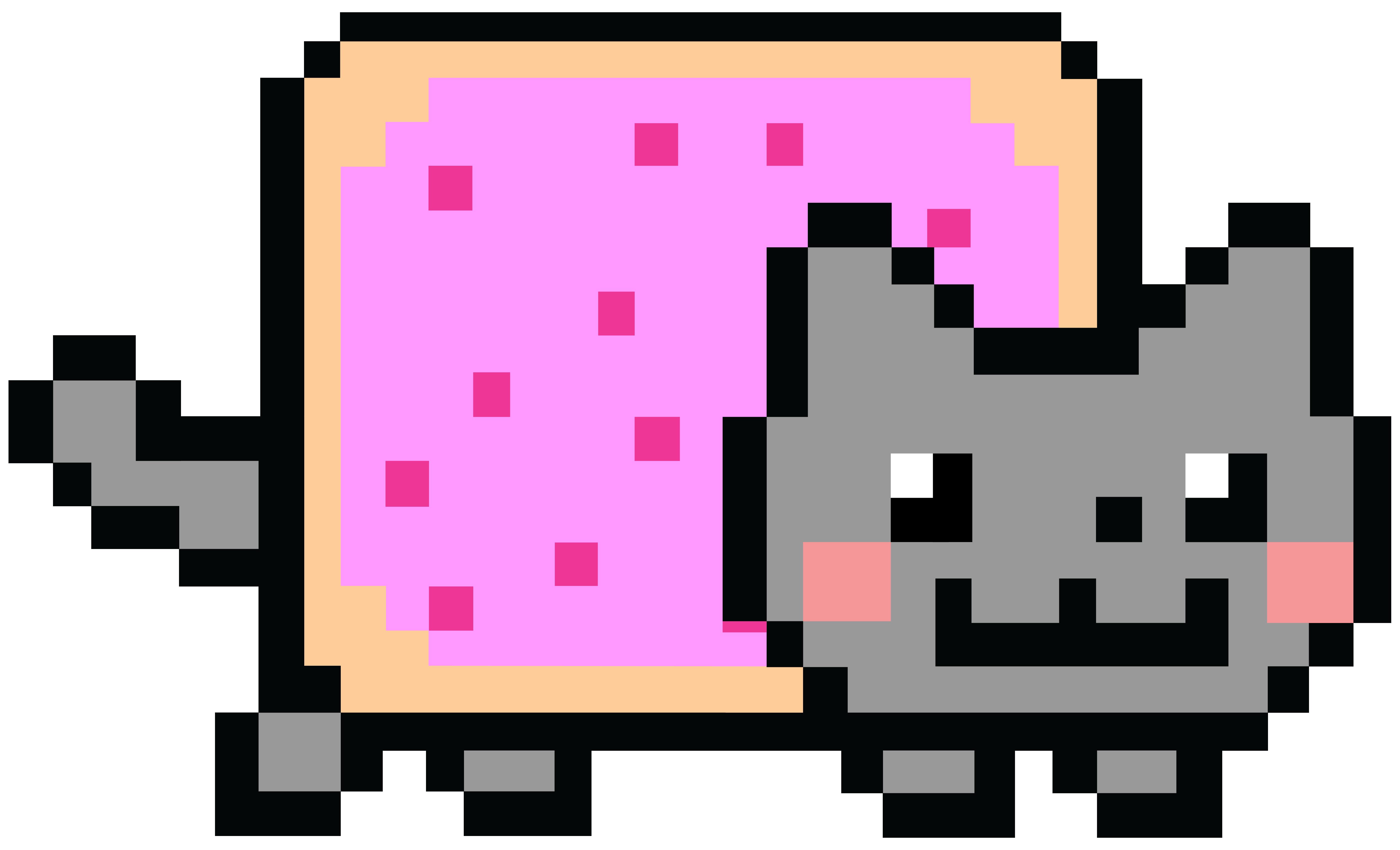 Giant Nyan Cat