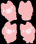 Lineless Pig