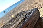 Empty beaches...