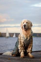 Yachtsman by DeingeL-Dog-Stock