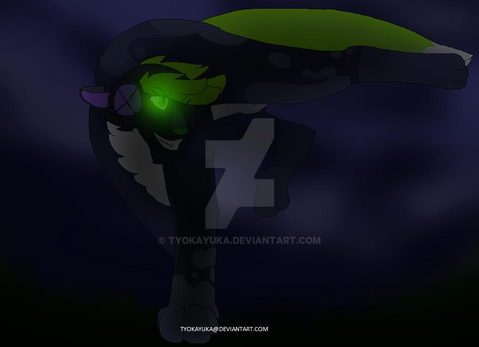 Toxicty Night Run by TyokaYuka