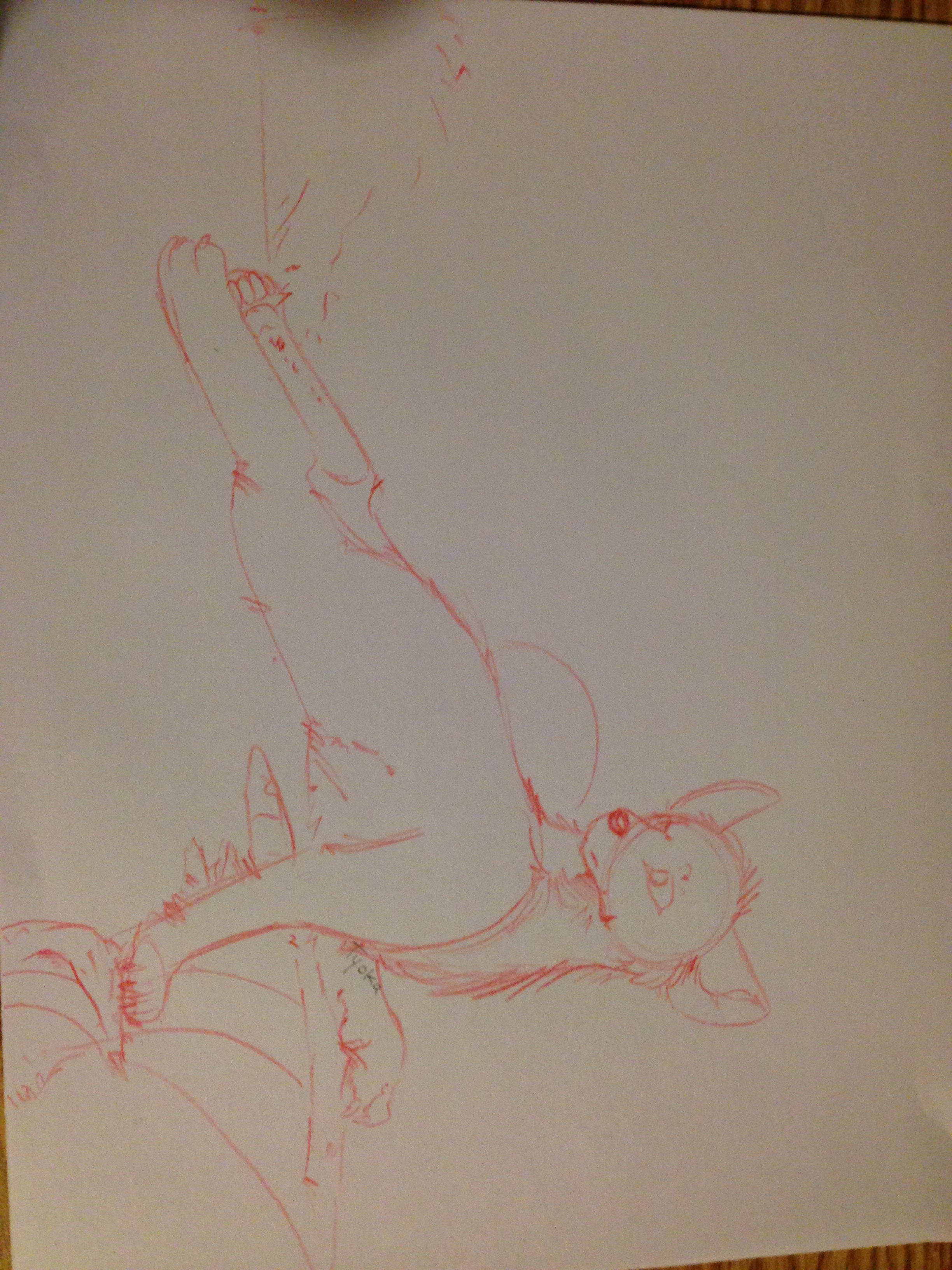 Red Sketch by TyokaYuka