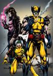 X-Men by Marcio
