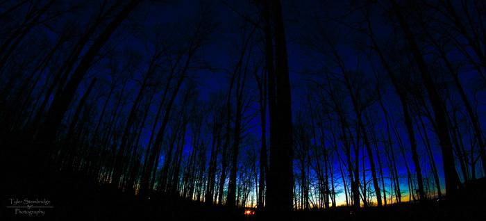 Night Sky (3/3/2013) 2 of 3