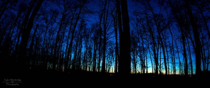 Night Sky (3/3/2013) 4 of 3