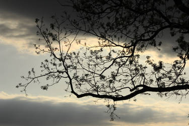Against a Prairie Sky by wanderingmage