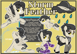 Storm Feather Reference Sheet