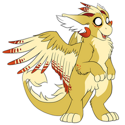 Cedar the Dutch Angel Dragon