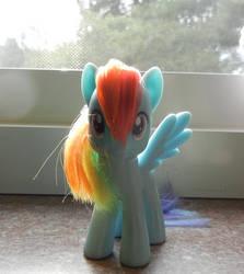 Rainbow Dash by CustomAnon