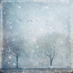 Let it snow by Elira1