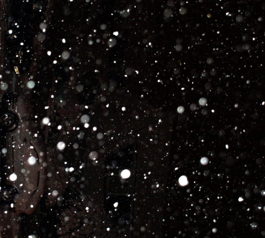 Falling Snow stock 1