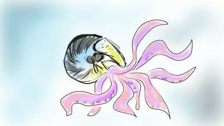 Nautilopus