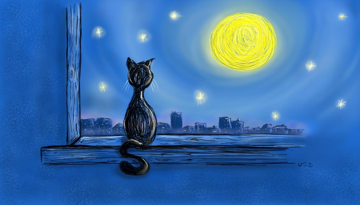 midnight moonlight Gallery