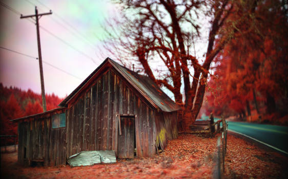 Barn panochrome