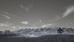 Landscape - Infrared