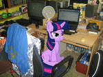 Twilight doesnt want to be disturbed