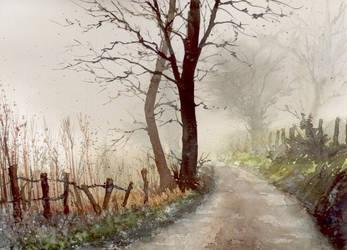 Way in the fog by nibybiel