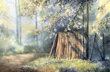 Under thriving tree by nibybiel