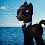 Akon Pony: Freedom