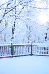 First December Snow by MVBPhotography