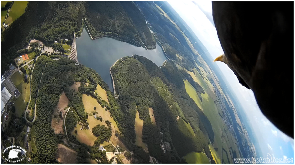 2015-55 First Person View II by W0LLE