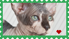 hairless cat love stamp by OrangeOsprey