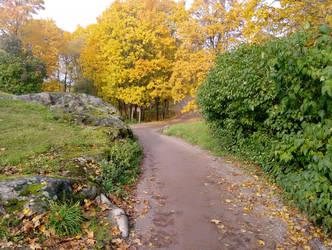 autumn in tololahti 1