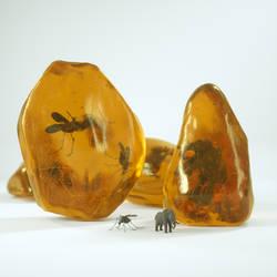 amber experiment - details - octane