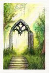 Gate in forest