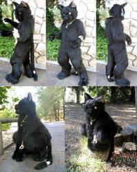 Erwin, Schrodingers Cat Fursuit by TwistedTerrace