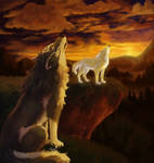 a Wolf Song