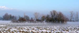 plain with snow