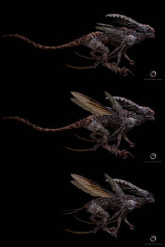 Xenomorph Form Redesigns from Monstieur