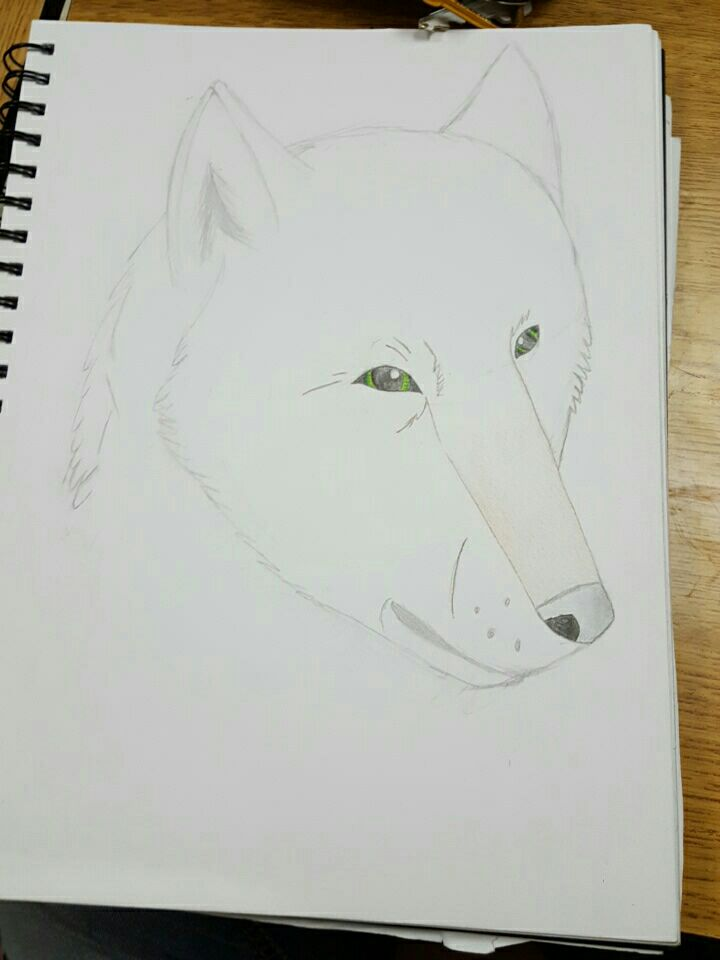 Abit of drawing practice. by wolflover1020