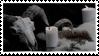 ram skull stamp by Nine-Inch-Kales