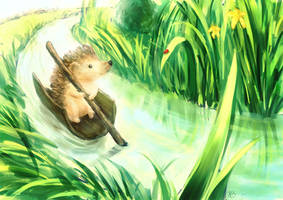 Hedgehog on a tiny river