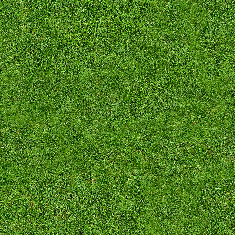 Seamless Tiling - Grass by HGGraphicDesigns
