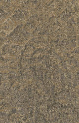 Free texture: sepia colored