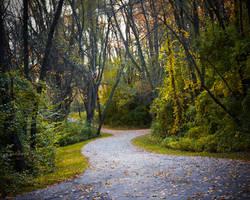 Trail by ktryon