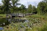 Spring fed lake