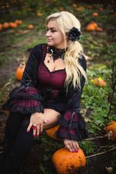 Pumpkin Field - Halloween