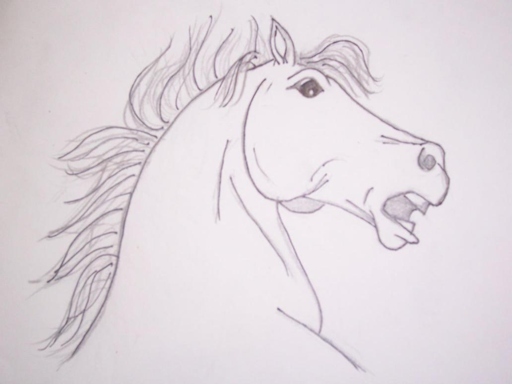 Gallery Draw Real Horse – Fondos de Pantalla